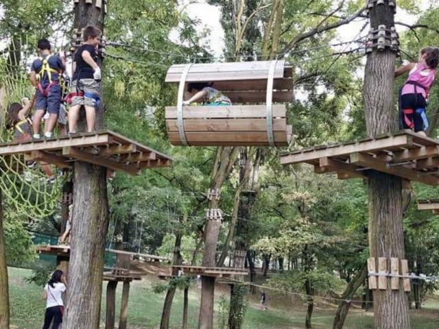 Tree Experience – Milano