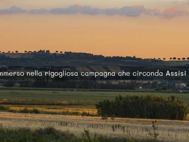 Il Podere di Assisi